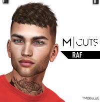 MODULUS RAF