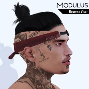 MODULUS REVERSE VISOR