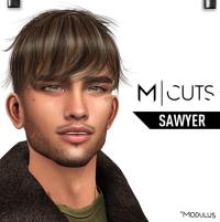 MODULUS SAWYER