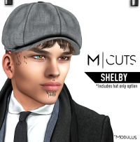 MODULUS SHELBY