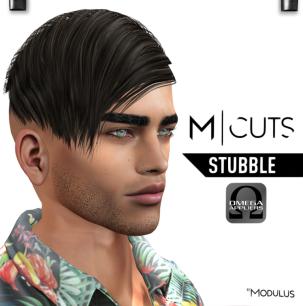 MODULUS STUBBLE