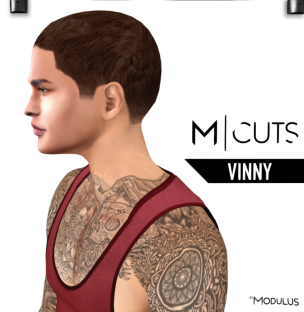 MODULUS VINNY