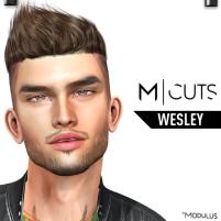 MODULUS WESLEY