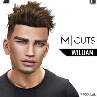 MODULUS WILLIAM