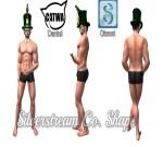 SILVERSTREAM CO