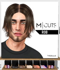 20190412 Access modulus