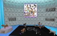 20190610 Equal10 rezz room
