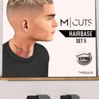 20190817 Mancave modulus