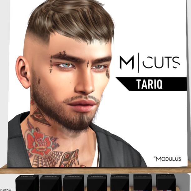 20190905 TMD modulus