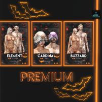 20191012 Access premium