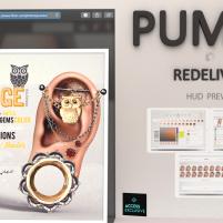 20191012 Access pumec