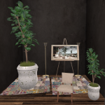 20191017 Mancave the little branch