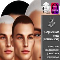 20200124 Manly Weekend [L&E] Hair base Robbi [Lelutka] [Omega]