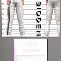 20200317 Mancave 4bidden