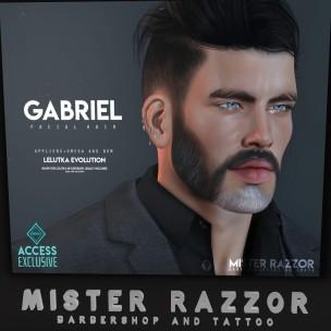 20200712 Access mister razzor