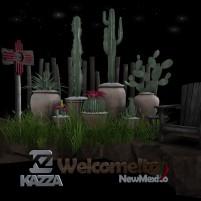 20200812 Access kazza